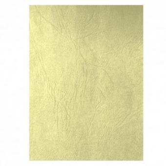 Coperta carton imitatie piele set 100 ECADA C