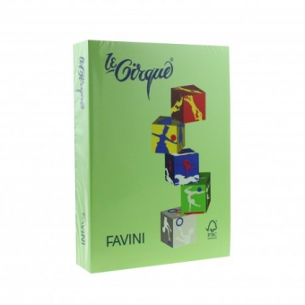 Carton color 160 g/mp A4 verde iarba Favini 203