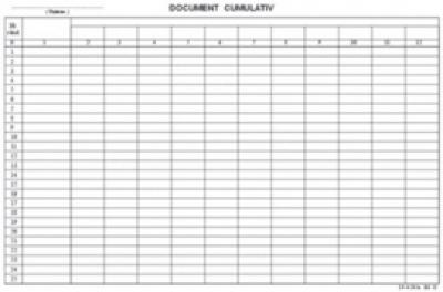 Document cumulativ A4 orizontal