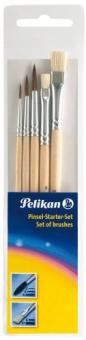 Set 5 Pensule Starter ( Seria 24 : 2,4,6 + Seria 613F : 6,10)